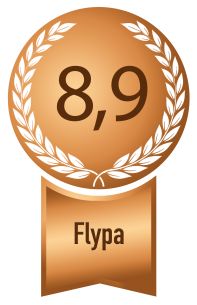 dusseldorf bronze flypa