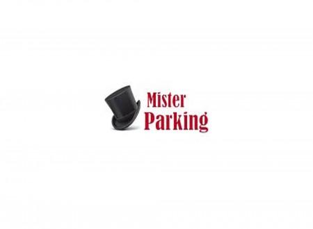 Mister Parking (Paga in parcheggio) foto 1