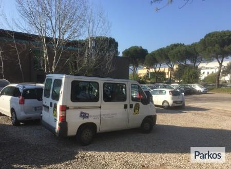 Parcheggio Aeroporto Firenze (Paga online) foto 6